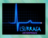 Visurraga Enterprises LLC